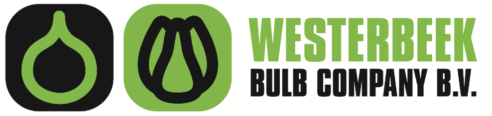 Westerbeek Bulb